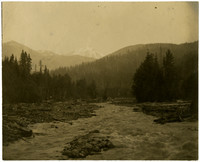 A stretch of the Nooksack River.