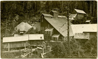 Buildings of a mining operation sit on forested mountainside
