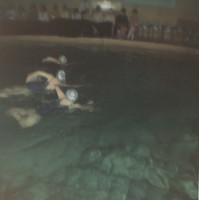 "Blue Barnacles Swim Club, ""1-2-3 Althogether, Lift!"""