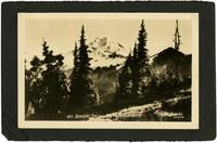 Mt. Baker from Skyline Ridge