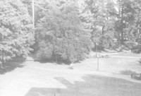 1981 View From Old Main