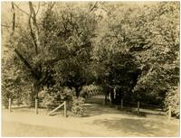 Bridge in Loring Park