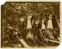 Couples dancing on logged tree stump