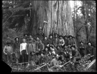 Thirty-two men and one dog pose in front of old-growth cedar tree