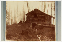 Berthusen property and Log cabin on hill with cellar door, surrounded by partially cleared forest