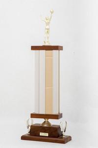 Basketball (Women's) Trophy: NCWSA Regional Champs (back), 1974