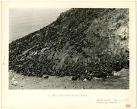Sea Lions on rocks north of Amak Island