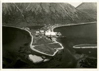 Aerial view of small peninsula of land at King Cove, Alaska, with village and cannery facilities at waters edge