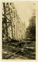 Wooden trestle under construction