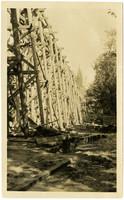 Wooden trestle under construction