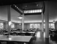 1981 Ridgeway Commons