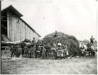 Workers gather around steam-powered threshing machine and large pile of hay