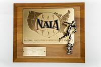 Football Plaque: NAIA District 1 Champions, 1976