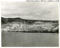 Pacific American Fisheries - cannery buildings at Shumagin Island