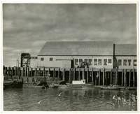Pacific American Fisheries' Daly - Dillingham, Alaska