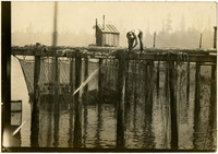 Man stands atop fishtrap securing frames to structure with 'trap shack' in background