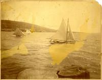 Sailing regatta at unidentified location