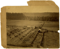 Aerial view of farm with fields of grass, orchards, and row crops with nearby forest, near Fairhaven, WA