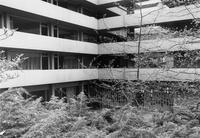 1980 Higginson Hall