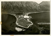 King Cove, Alaska - view from a hill opposite the Pacific American Fisheries (PAF) Cannery