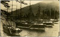 Five moored sailing vessels in Chuckanut bay