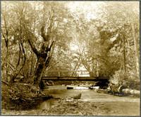A wooden bridge crossing Whatcom Creek.