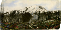 Hand-colored photo print of Mt. Rainier, Nisqually river vally, field of wildflowers in foreground