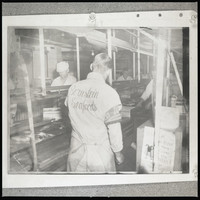 Five unidentified men working at a Bornstein Seafoods conveyor belt with fish and boxes on it