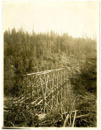 A prefabricated section of railroad bridge is lowered into place during construction of the Chuckanut Creek railway trestle also known as