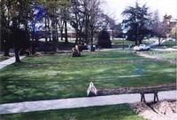 1985 Irrigation System Installation