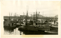 Dinghys, drum seiners, fishtrap tenders, pleasure yachts tied to the docks in Anacortes Harbor