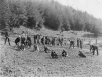 1906 Planting The School Garden