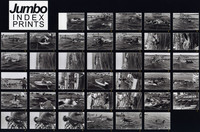 1970 Penn Cove Orca Whale Capture (Contact Sheet #3 of 5)
