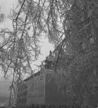 1959 Edens Hall: Ice Storm