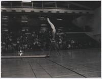 1967 Danish Gymnastics Team