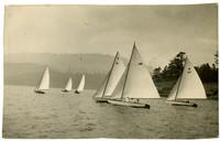Regatta of six sailing skiffs in unidentified location.