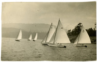 Regatta of six sailing skiffs in unidentified location.