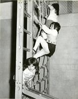 1955 Climbing The Rope Ladder