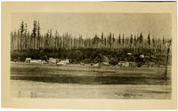 View from across water of village on water's edge with forest in background
