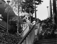 1975 Ridgeway Delta