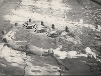 Blue Barnacles Swim Club, Members of the Blue Barnacles Swim Club Performing