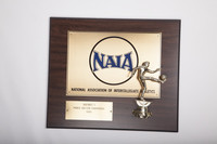 Soccer (Men's) Plaque: NAIA District 1 Champions, 1989