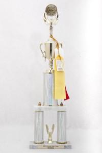 General Trophy: College Spirit Camp Superior (front), 2005