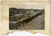 Eight men stack logs onto small rail cars at lumber mill