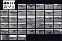 1970 Penn Cove Orca Whale Capture (Contact Sheet #1 of 5)