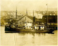 "Fishtrap tender ""Phillip F. Kelly"" on waters in front of cannery and dock"