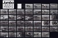 1970 Penn Cove Orca Whale Capture (Contact Sheet #5 of 5)