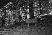 1976 Student in Sehome Hill Arboretum