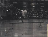Danish Gymnastics Team-67