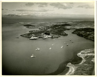 Aerial view of small bay with fishing vessels, cannery facilities, and village